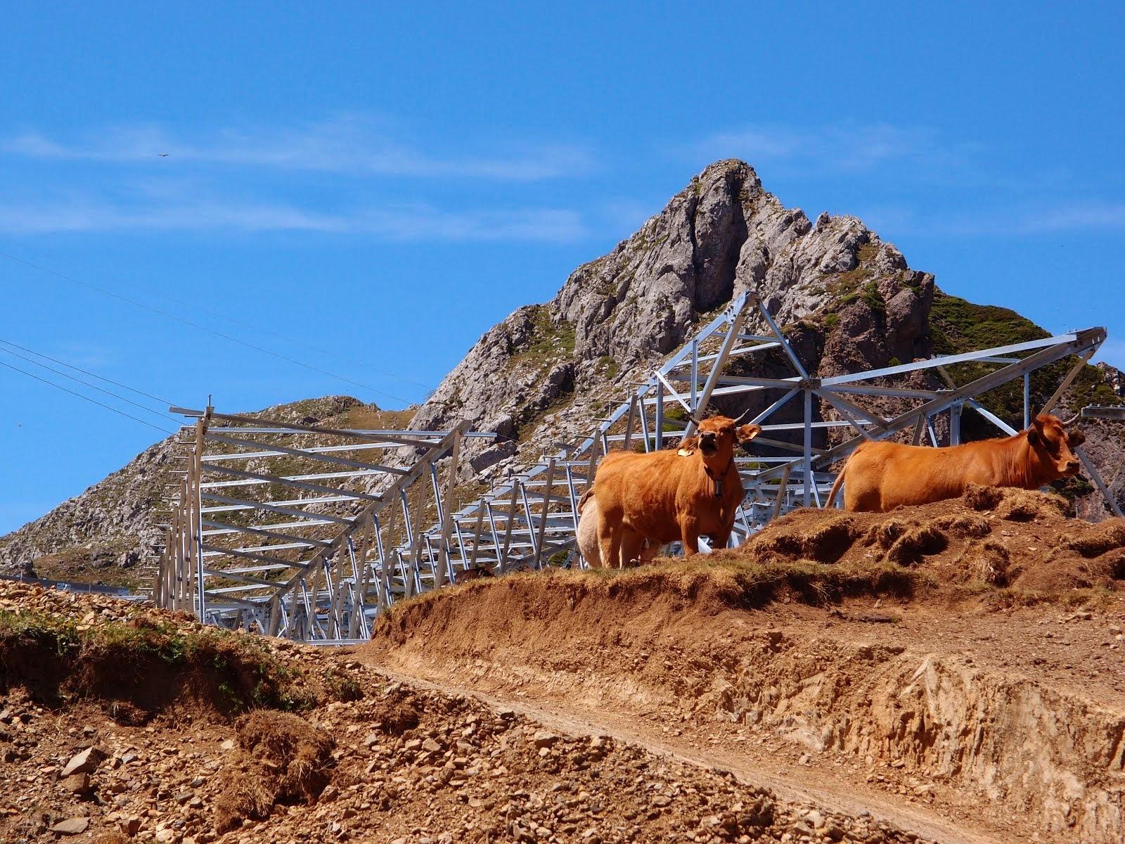 Linea Puerto Pinos 795936 Jpg # Muebles Seyer Ayamonte