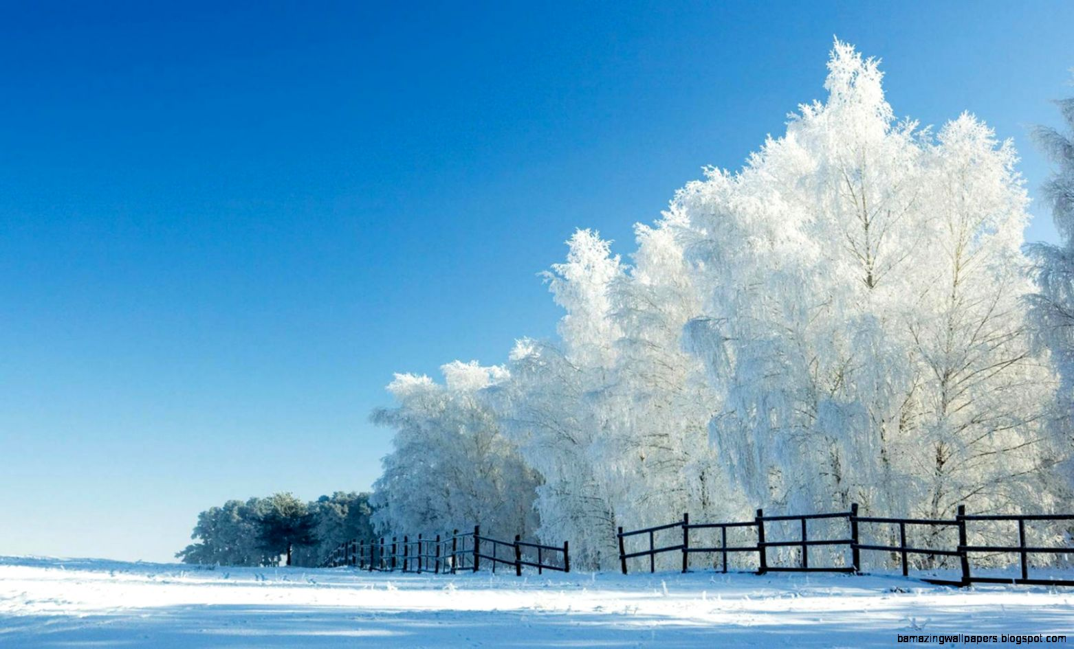 41 Snow Photos and Pictures RT63 HD Widescreen Wallpapers