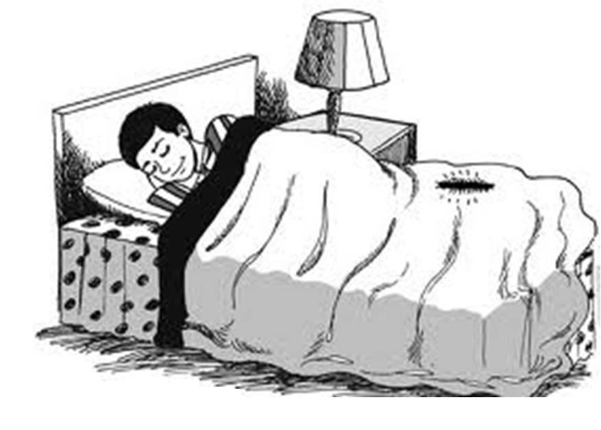 Rahasia Tidur Miring ke Kanan Anjuran Nabi Saw