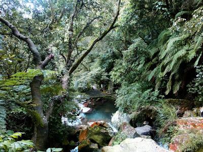 Hike from Yangming Park in Yangmingshan Taiwan