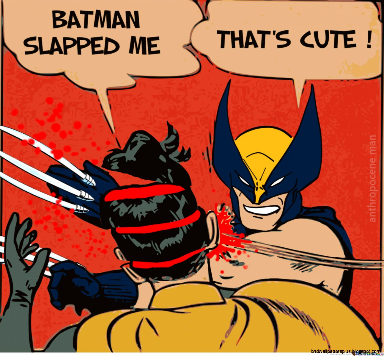 Funny Pictures Batman Robin | HD Wallpapers Plus