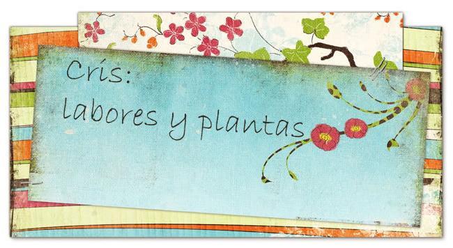 Cris: labores y plantas