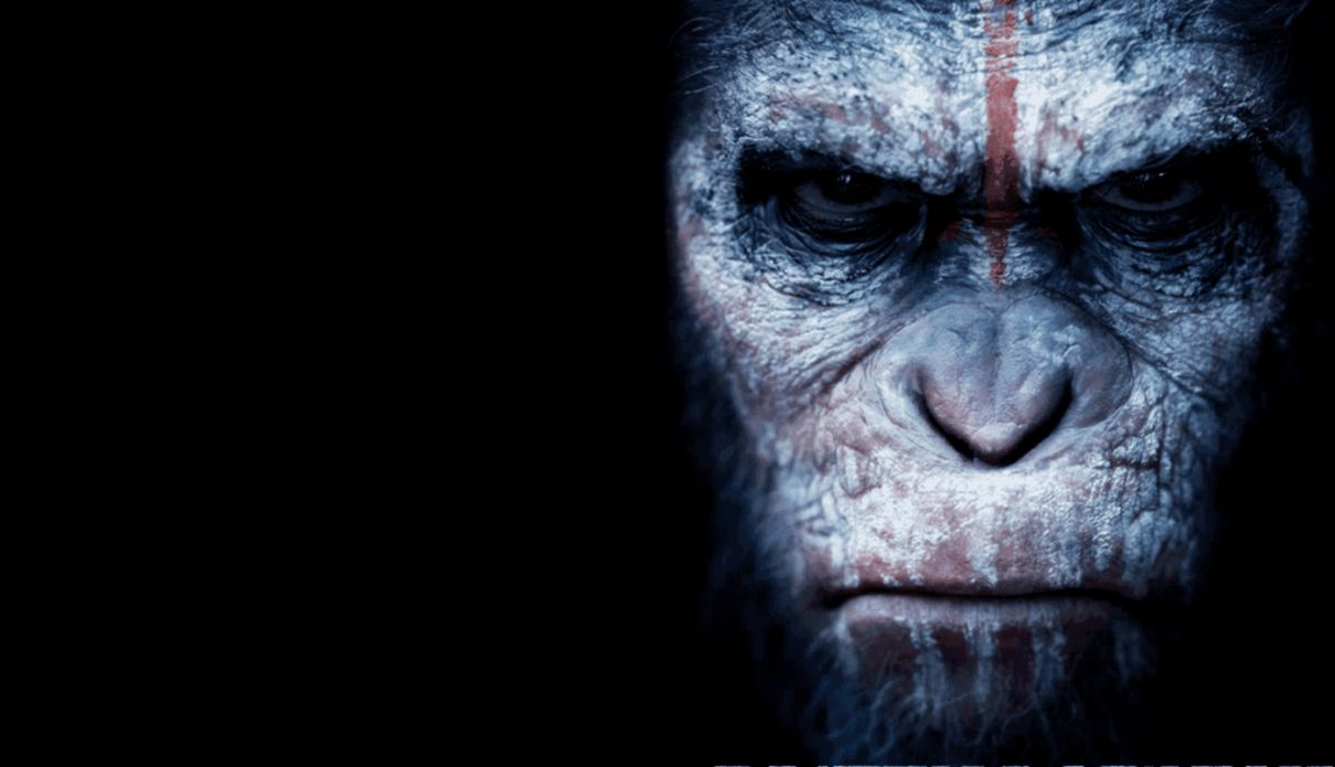 Dawn Of The Planet Of The Apes Wallpaper Hd