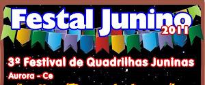 VEM AÍ O 3º FESTAL JUNINO - DIA 29 DE JUNHO