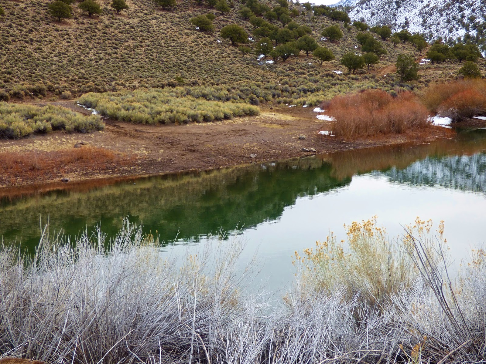 The quiet fly fisher southern utah fly fishing guide for Utah fishing report