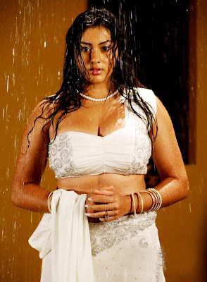 Hot Celebs Wall: Namitha Hot in Saree
