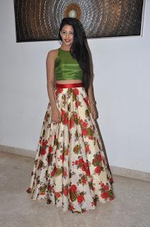 Daksha Nagarkar at hora hori audio 017.JPG