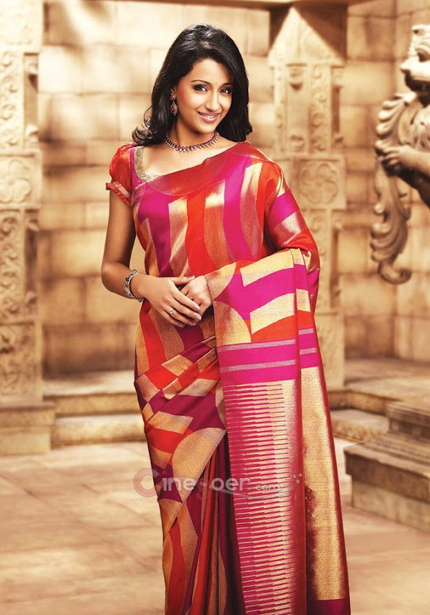 Trisha in silk saree - (7) -  Trisha Samudrika Pattu Pothys Silk Saree PhotoShoot Pics