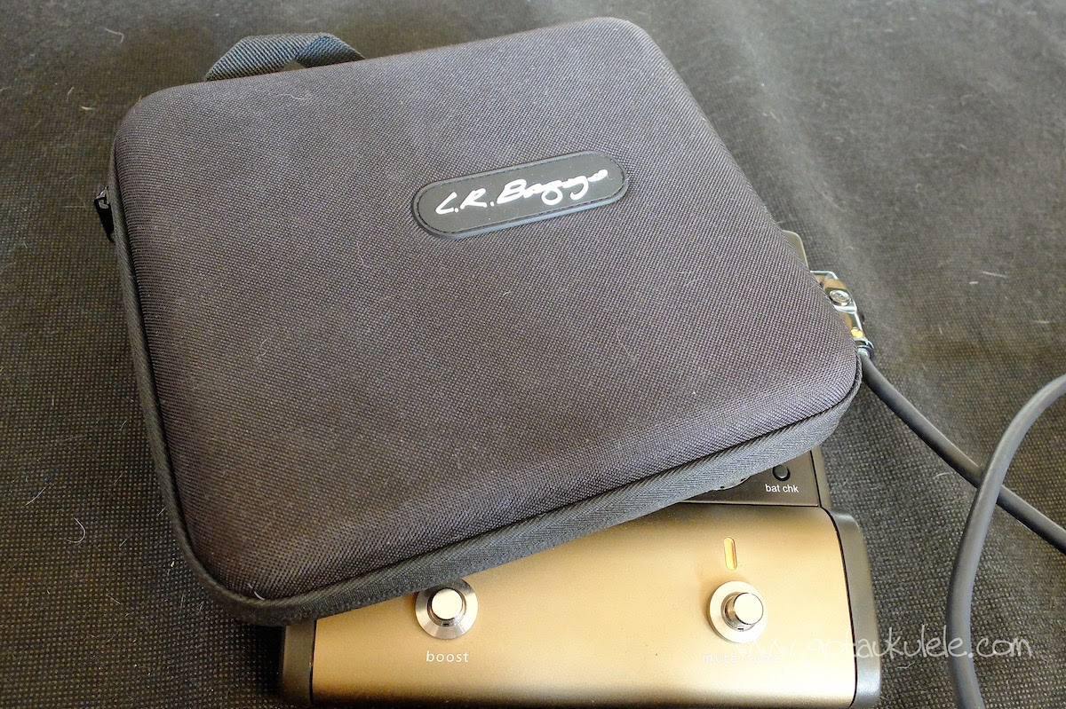 LR Baggs Venue DI carry case