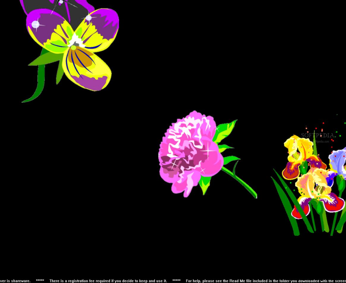 Pretty Flowers Screensaver Download