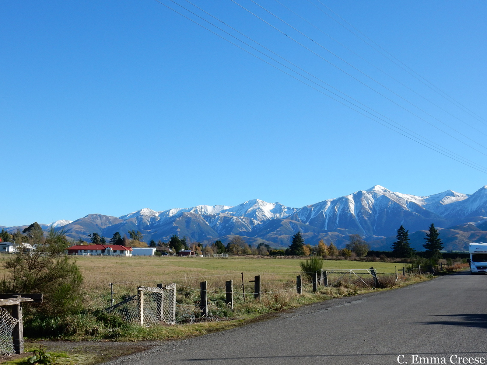 Fridayish figments and photos: the New Zealand Edition