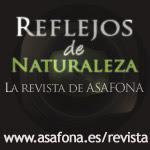 Reflejos de Naturaleza