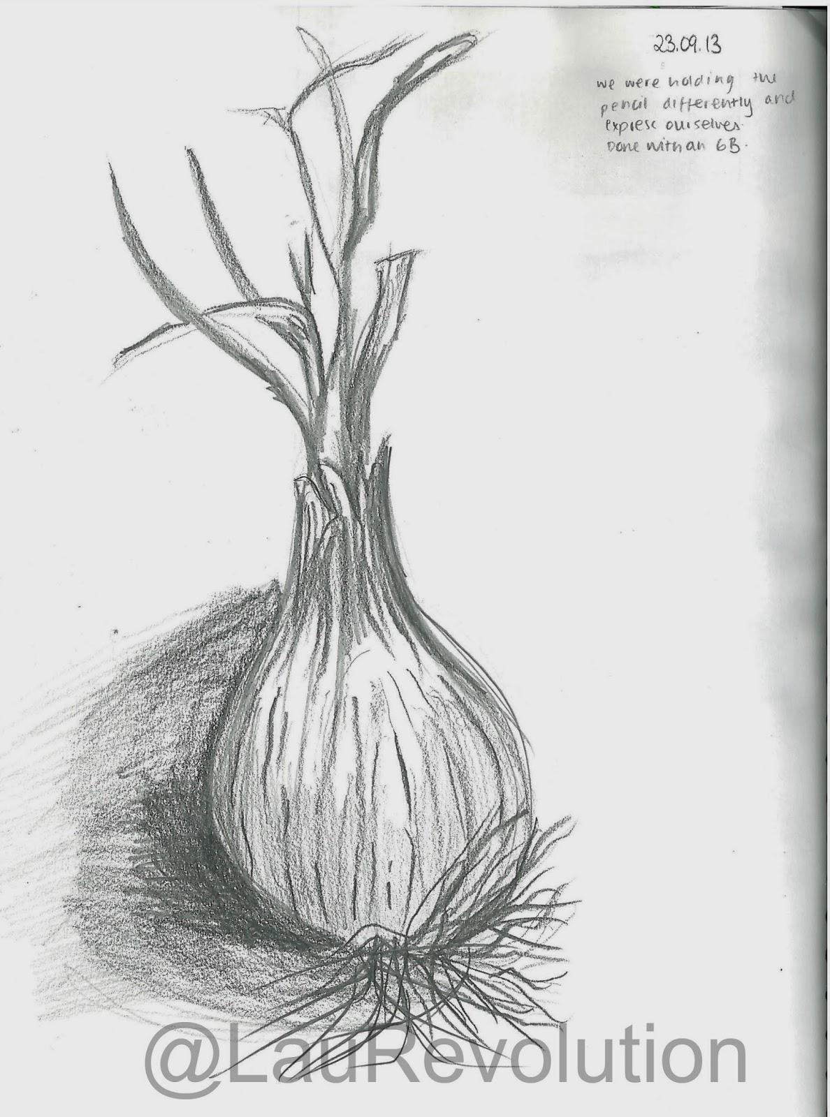 Line Drawing Natural Forms : Natural form pencil drawings