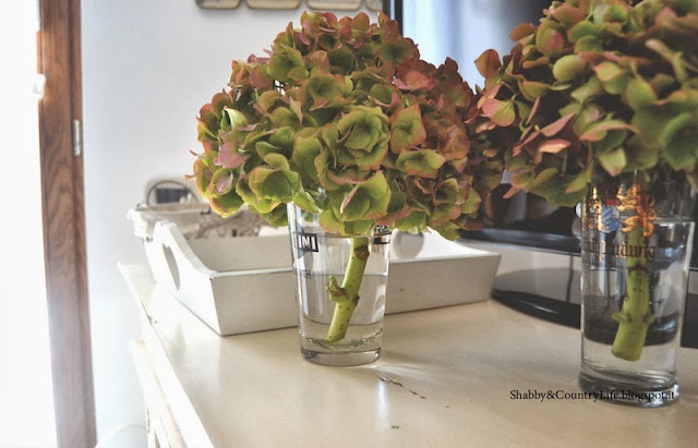 In Old Glasses- Hydrangeas - Shabby&CountryLife.blogspot.it