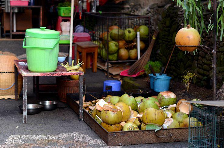 Kelapa Muda, Ibu Oka, Bali, Indonesia
