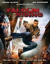 Chim Ưng Trỗi Dậy - Falcon Rising - 2014