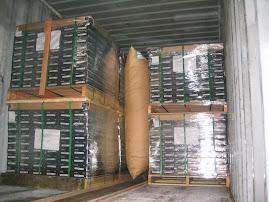 貨櫃緩衝氣墊