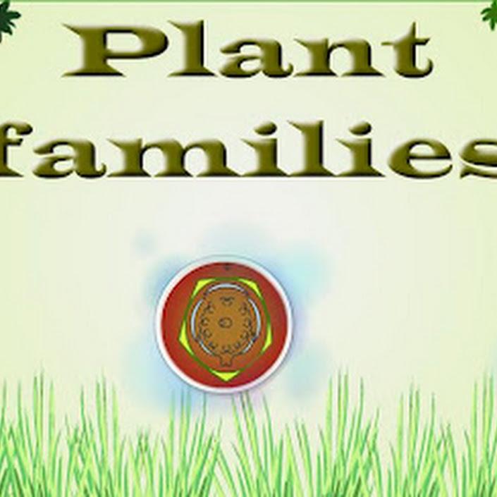 Plant Families by Classteacher.com