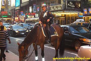 Policía a caballo en Nueva York