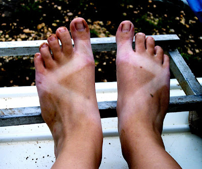 Kelsey Smith - African Chaco Z tan with dirty feet on a bus...to go!