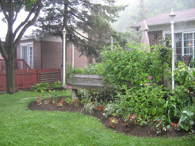 dalles plastique de jardin