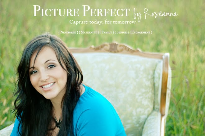 Picture Perfect by Roseanna