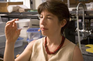 Marlene Zuk, a professor of biology at UC Riverside, observes a cricket in the lab.