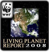 report on planet three pdf