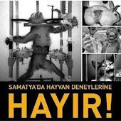 DENEYE HAYIR
