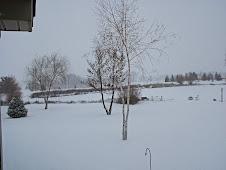 Winterwonderland (201)