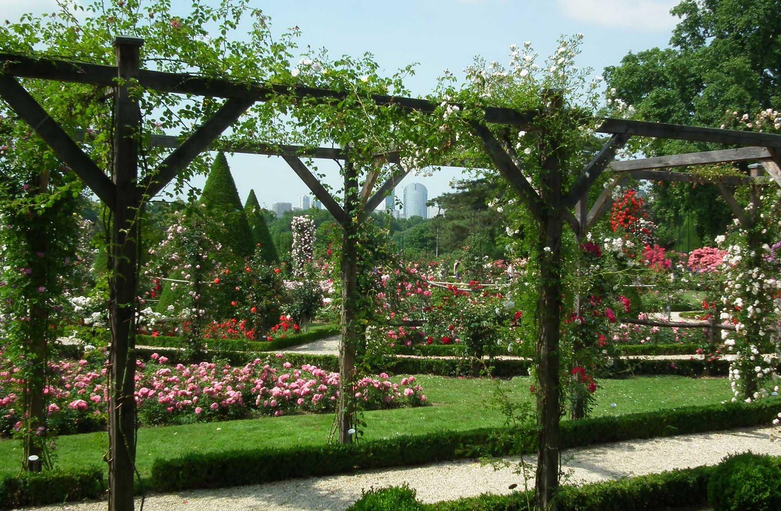 this week in carlux - Mon Jardin Ma Maison