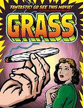 GRASS: La pelicuala