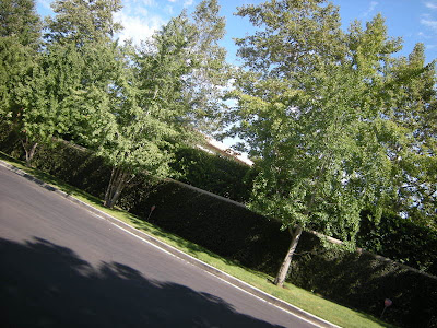 O.J. Simpson's Ashford Gate