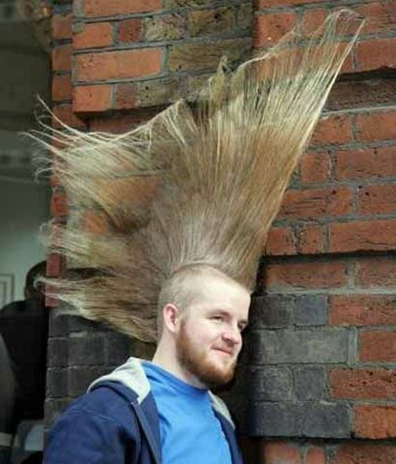 Stunning New Craziest Hairstyles Photos | World's Most Craziest Hairstyles Photos Seen On www.coolpicturegallery.us