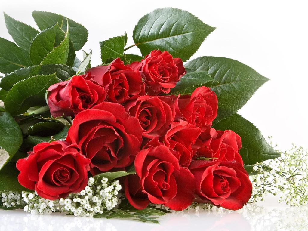 http://3.bp.blogspot.com/_-8ueNRWhLqY/TUvXYet7CkI/AAAAAAAAB1E/60hrscysI9A/s1600/Love%2BRed%2BRoses.jpg