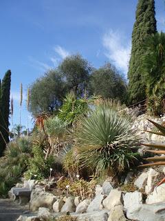 Jardins d 39 exceptions et plantes diverses jardin hanbury la mortola italie for Jardin hanbury