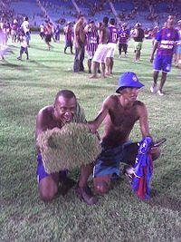 Torcedor do Bahia comendo grama