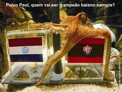Polvo Paul