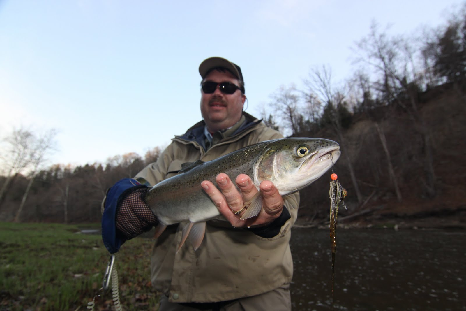 Steelhead alley outfitters lake erie fly fishing guide for Steelhead fishing ohio