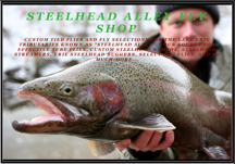 Steelhead Alley Fly Shop