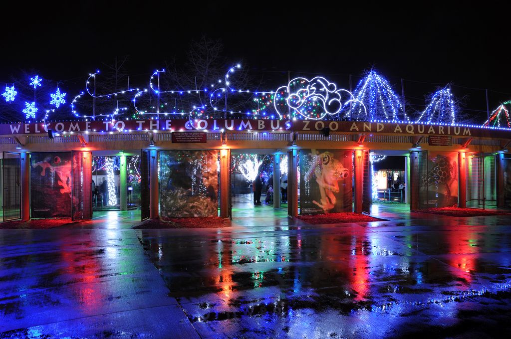 Coupons for columbus zoo wildlights