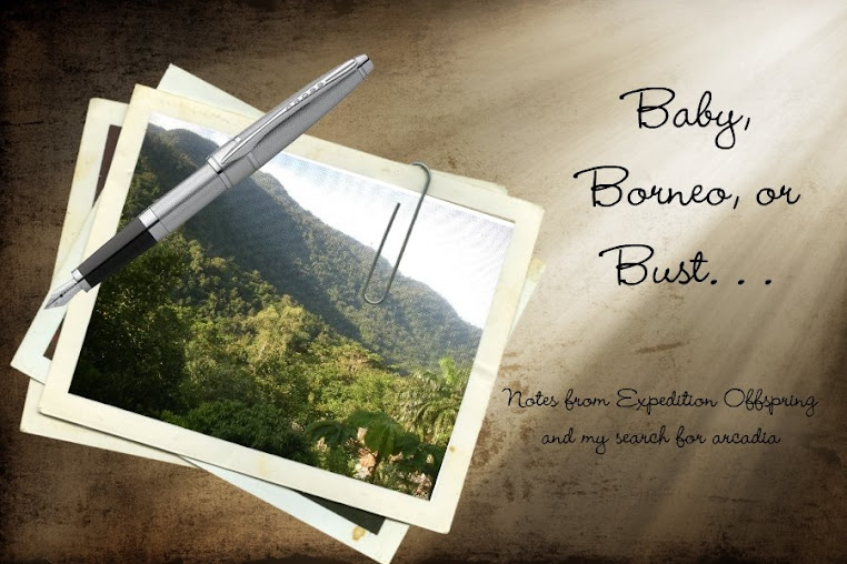Baby, Borneo or Bust. . .