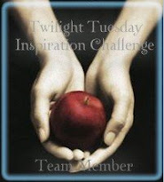 Twilight Tues Design Team