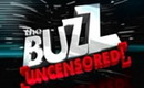 The Buzz February 3 2013 Replay