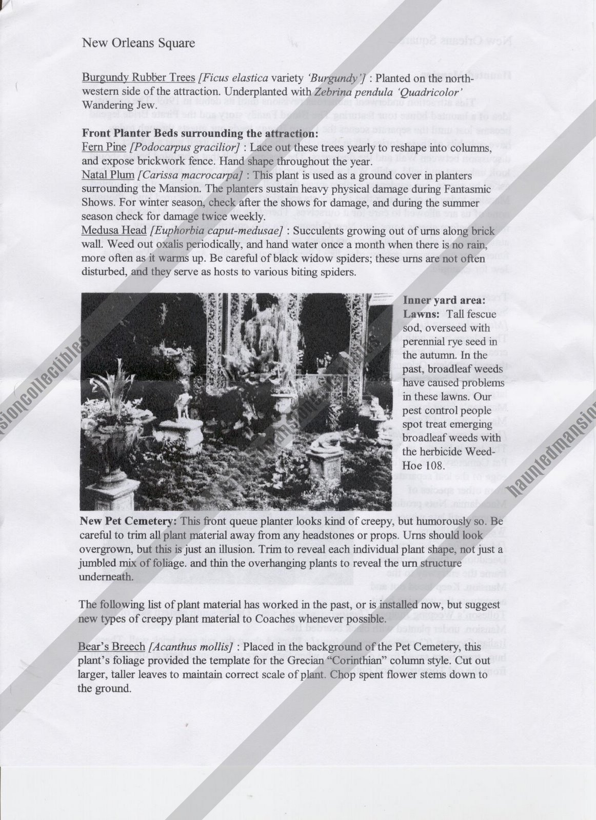 [HM+plant+list+pg2.JPG]