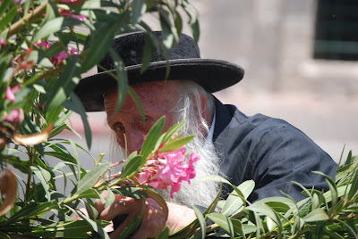 Shlomit Or/© Thomson Reuters 2009 All rights reserved A Jewish Orthodox man picks flowers on the street for the celebration of Shavuot in Jerusalem, Israel.