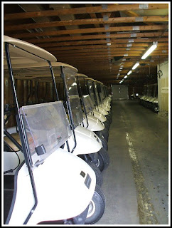 Golf Carts at Meadow Lakes