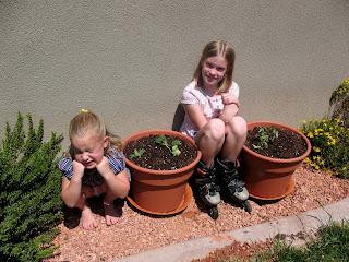 Simmons Six How Does Hailey 39 S Garden Grow