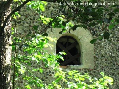 мельница, заброшенная мельница, старая мельница около Юбилейного озера в Беларуси