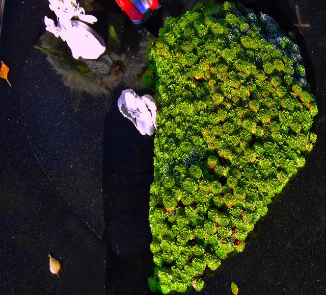 сердце на могиле, оргинальный памятник, необычная надгробная плита